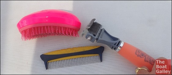 Equipment for DIY Dog grooming