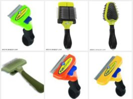 TOP 5 BEST DOG BRUSHES FOR LONG AND SHORT HAIR REVIEWS