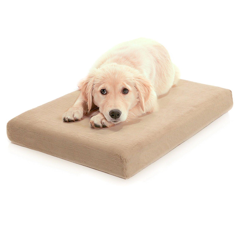 Top 5 Best Memory Foam Dog Beds Reviews Best Top Care