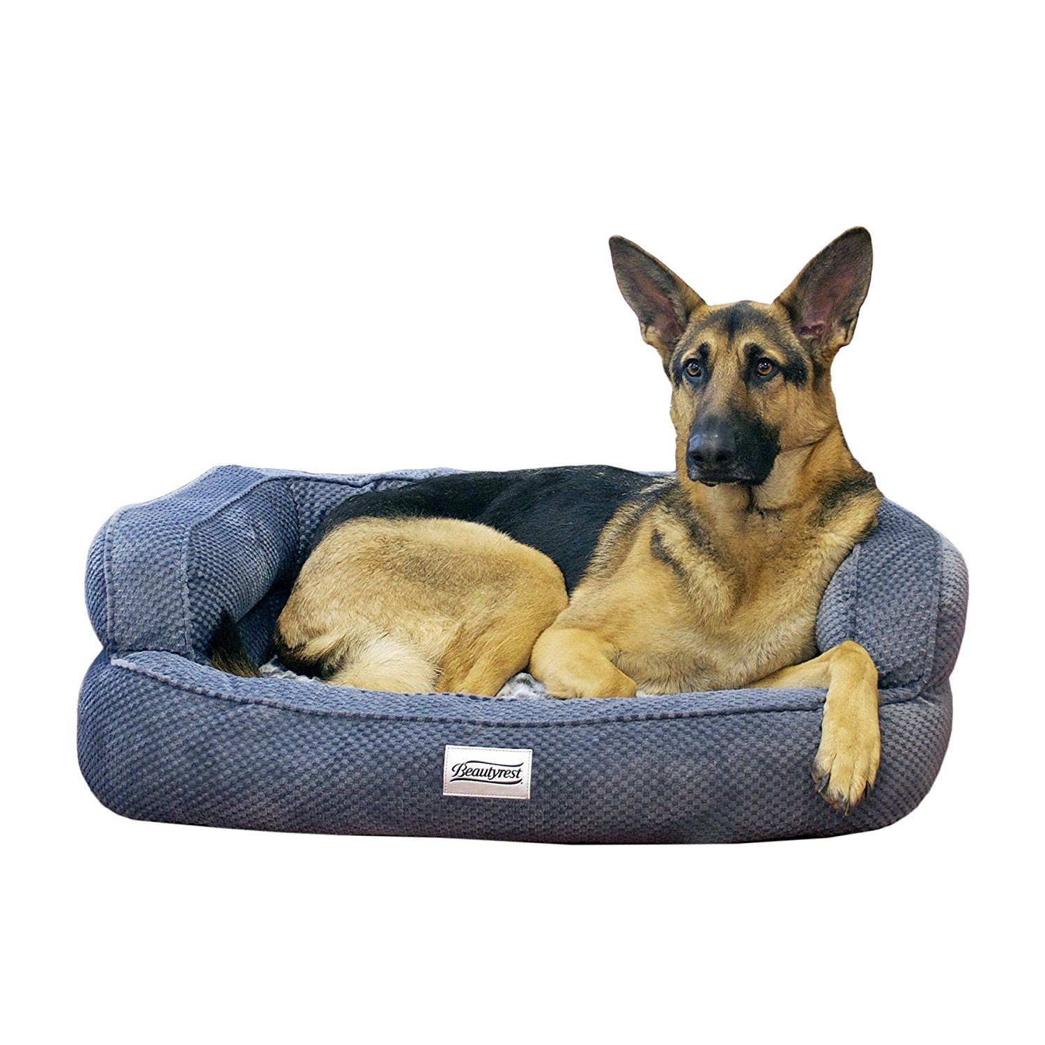 Top 5 Best Memory Foam Dog Beds Reviews Best Top Care
