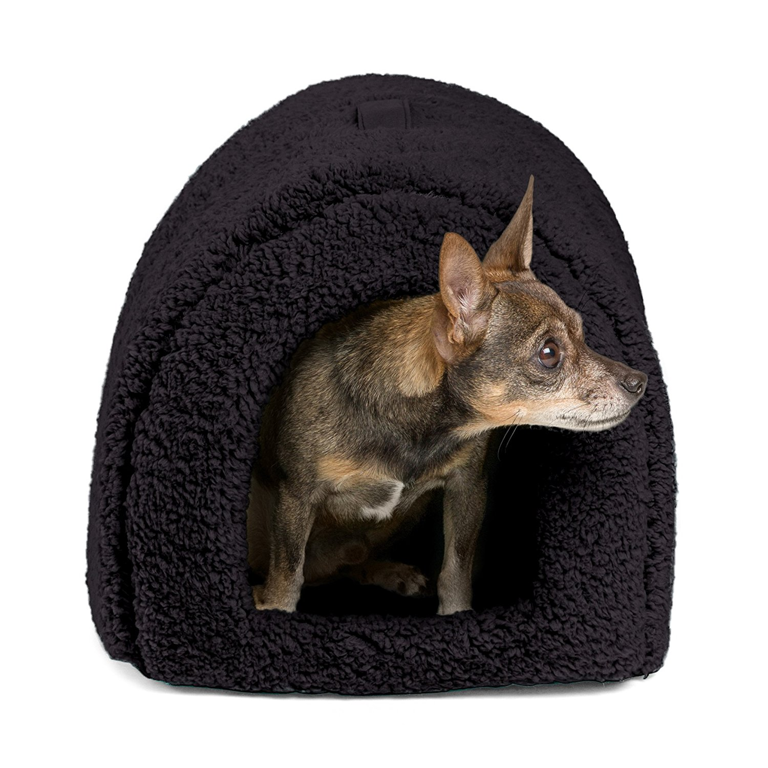 Best Outdoor Dog Houses Best Top Care With Dogs