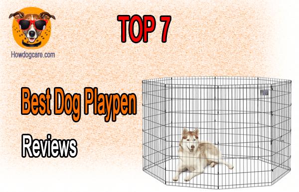 Top 7 Best Dog Playpen Reviews