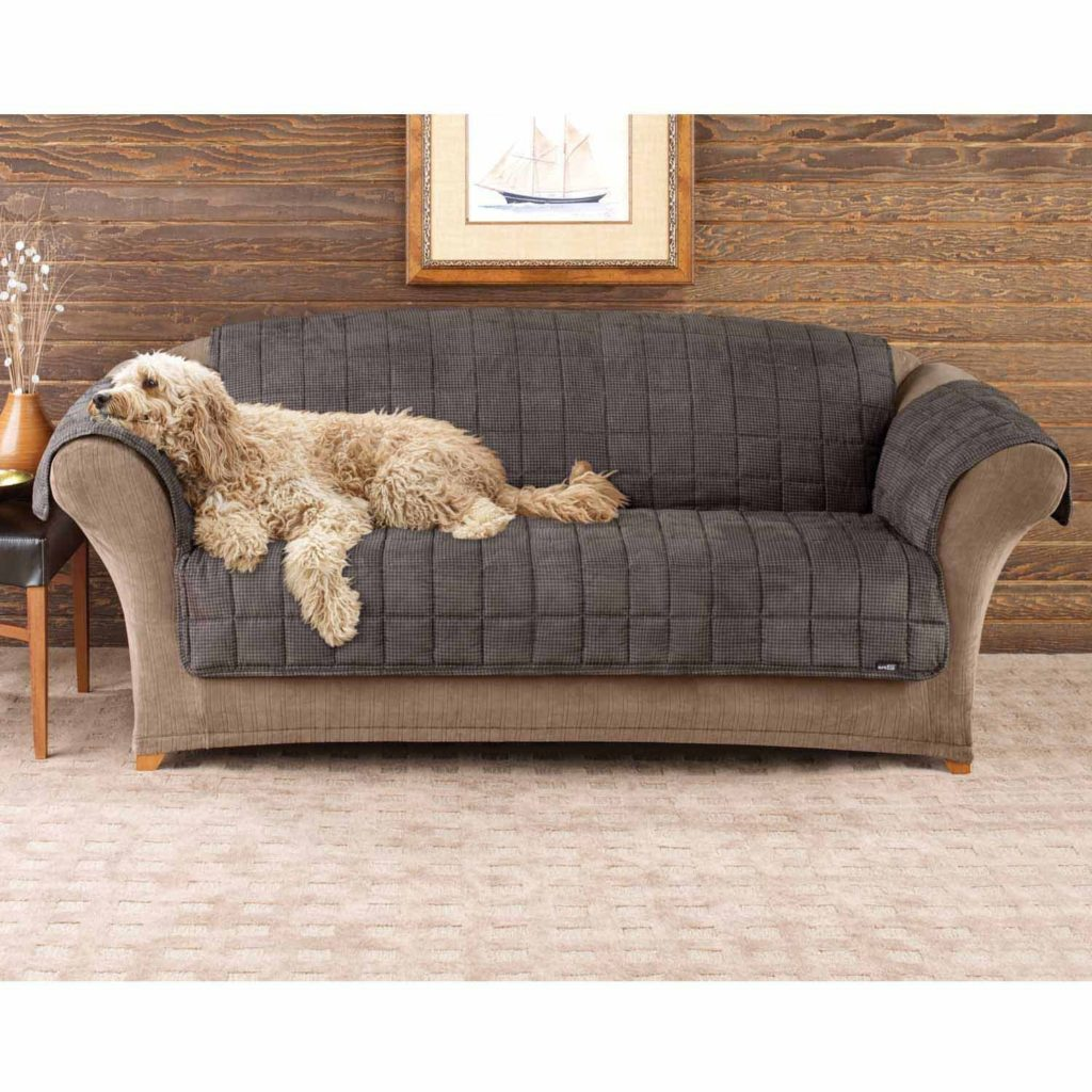 Tremendous Top 8 Best Dog Couch Cover Reviews Best Top Care With Dogs Beatyapartments Chair Design Images Beatyapartmentscom