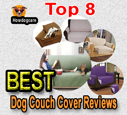Top 8 Best Dog Couch Cover Reviews - Best top care with dogs