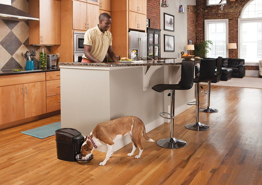 Best automatic dog feeder By PetSafe Healthy Pet Simply