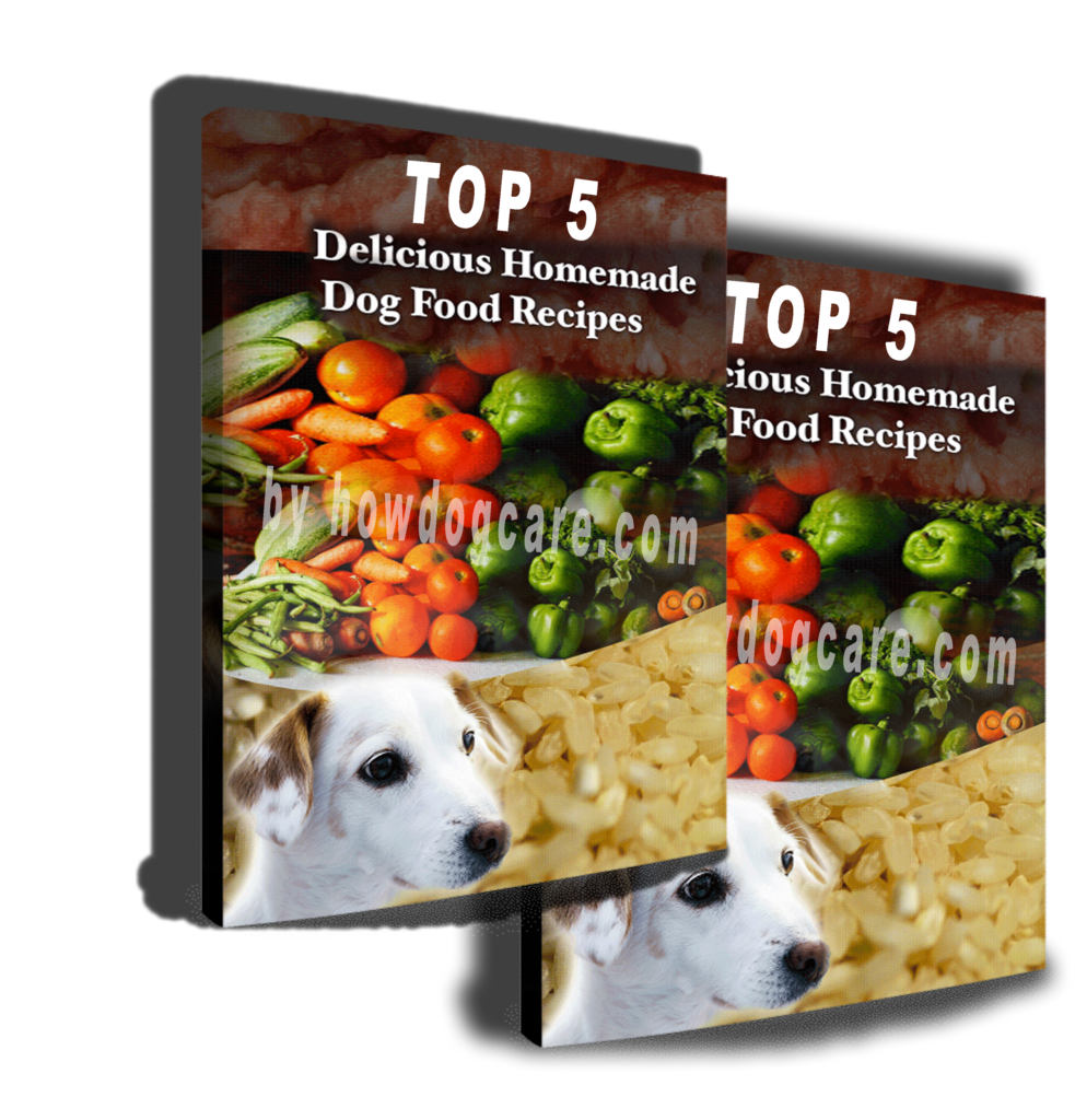 Top 5 Best Homemade Dog Food Recipes (7-Page)