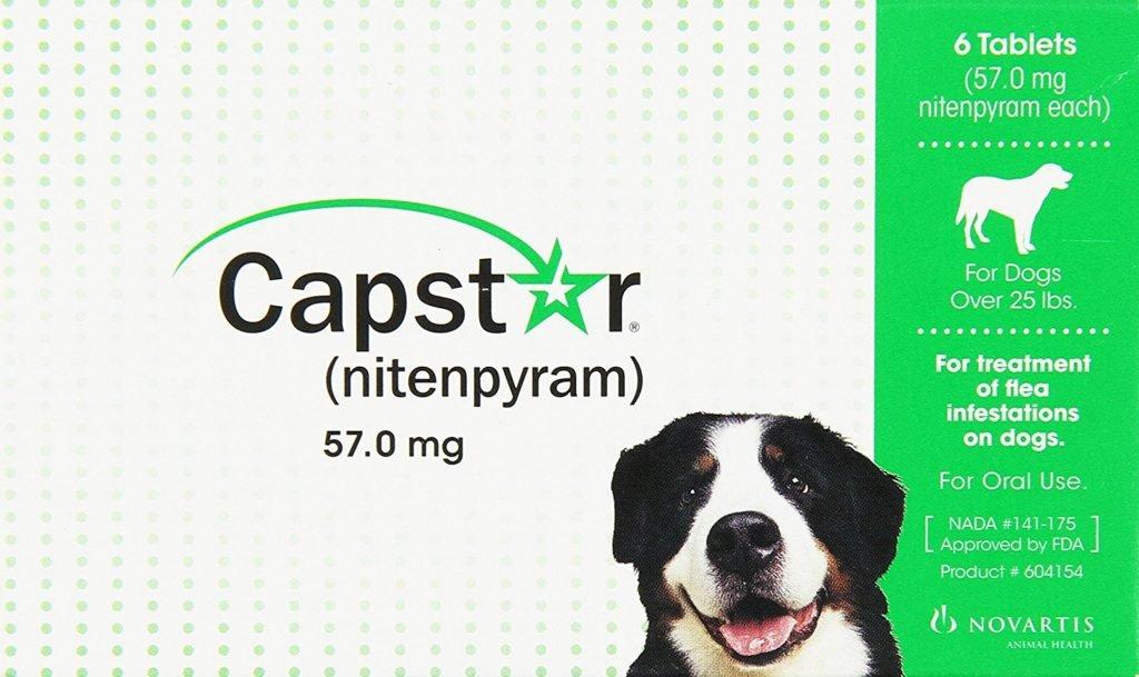 Best Flea Medicine For Dogs 1