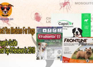 Best Flea Medicine For Dogs And Top 8 Reviews In 2018