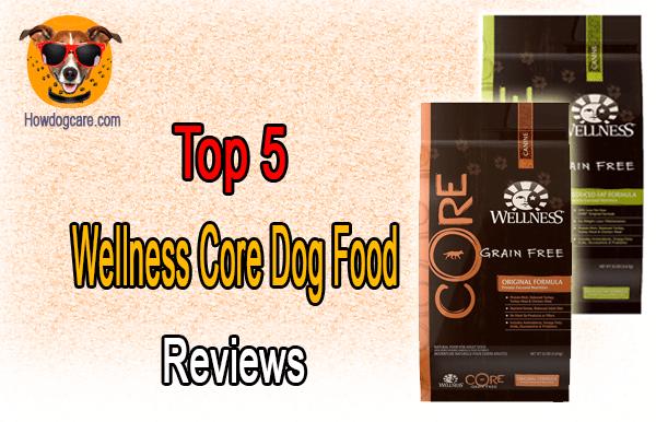 Top 5 Wellness Core Dog Food Reviews