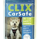 Travel Safe With A Small Dog Car Harness 2