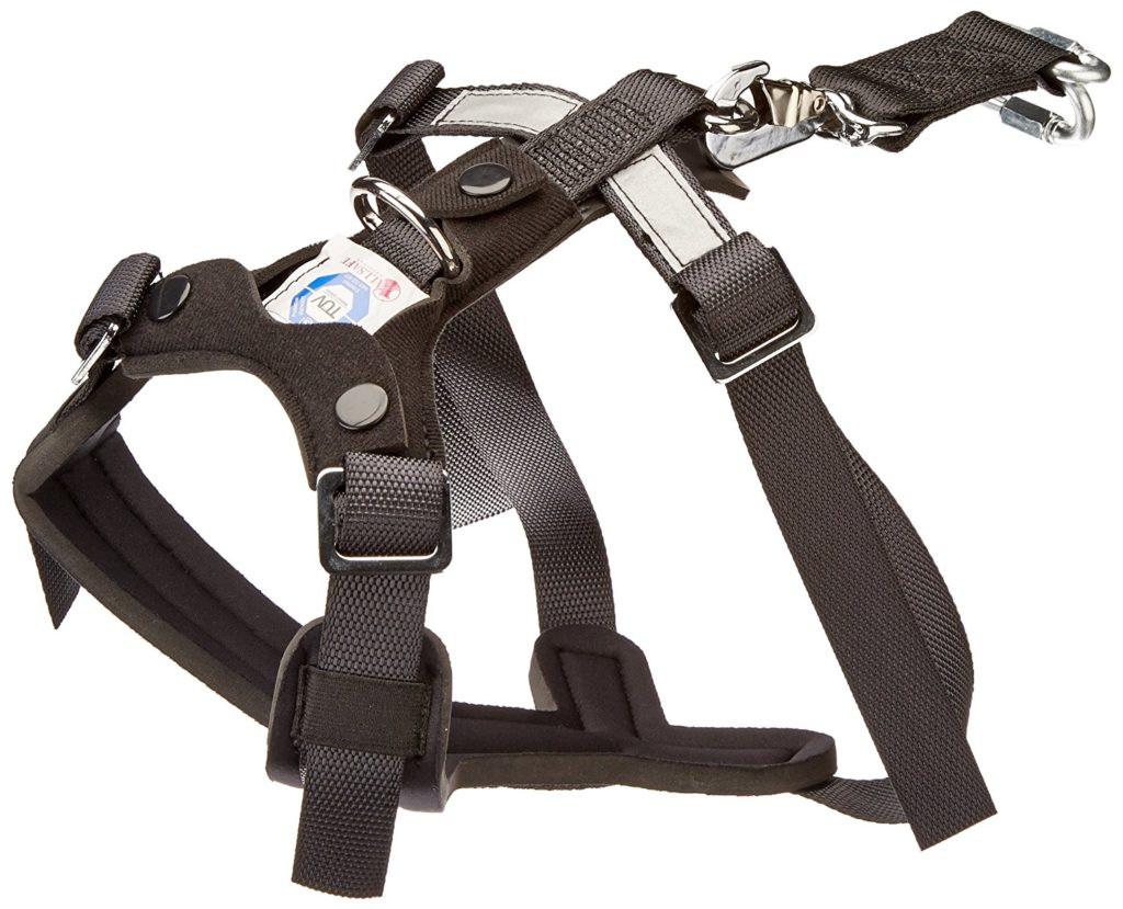 Travel Safe With A Small Dog Car Harness 8