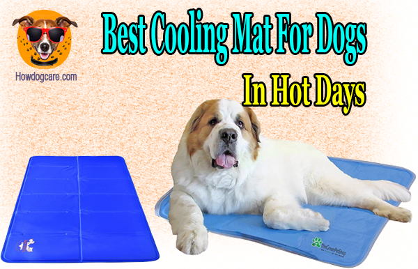 Top 8 Best Cooling Mat For Dogs In Hot Days Best Top Care