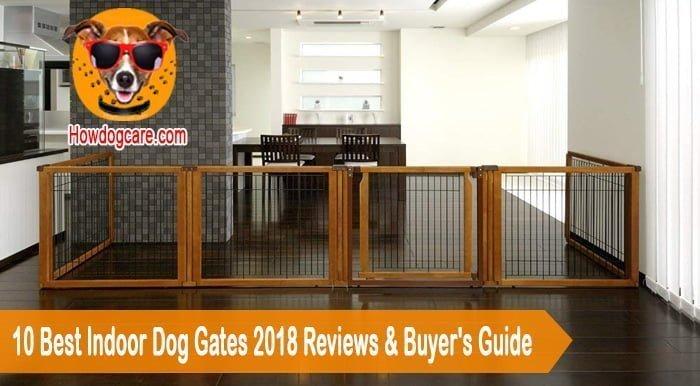 10 Best Indoor Dog Gates 2018 Reviews & Buyer's Guide
