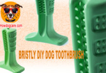BRISTLY DIY DOG TOOTHBRUSH
