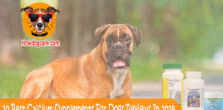 10 Best Calcium Supplements For Dogs Reviews In 2019