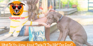 "What Do You Know About ""Taste Of The Wild"" Dog Food?"