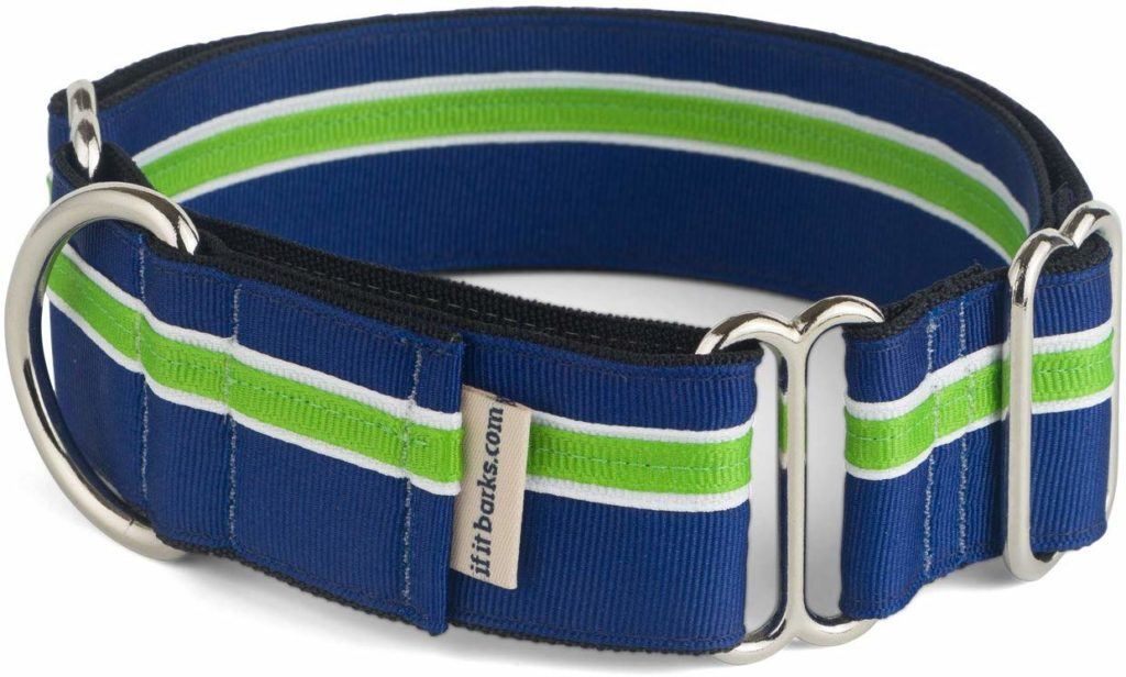 """1.5"""" Martingale Collar for Dogs From If It Barks"""