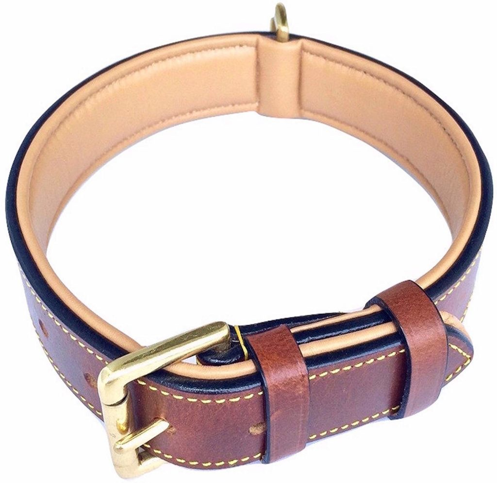 Real Leather Padded Dog Collar From Soft Touch Collars